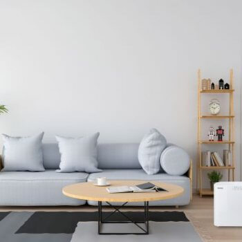 Ionmax air purifiers can trap and kill viruses indoors